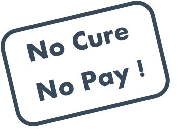 No Cure No Pay Makelaar